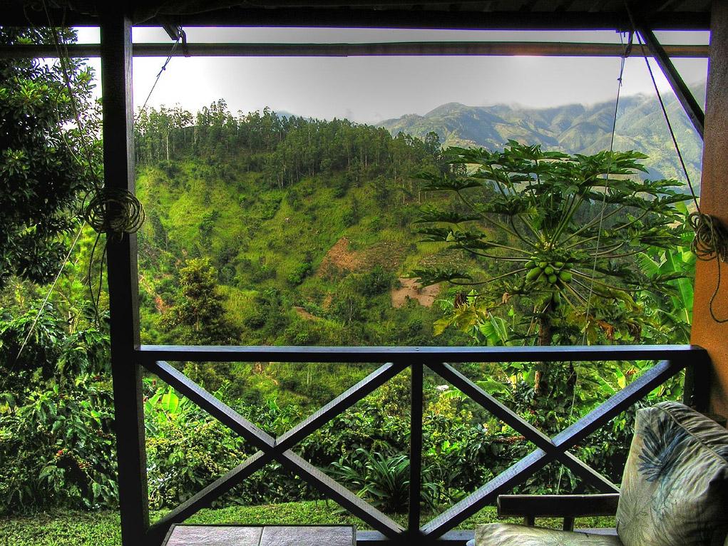 Lime Tree Farm Views